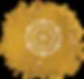 DERMAgraphics logo