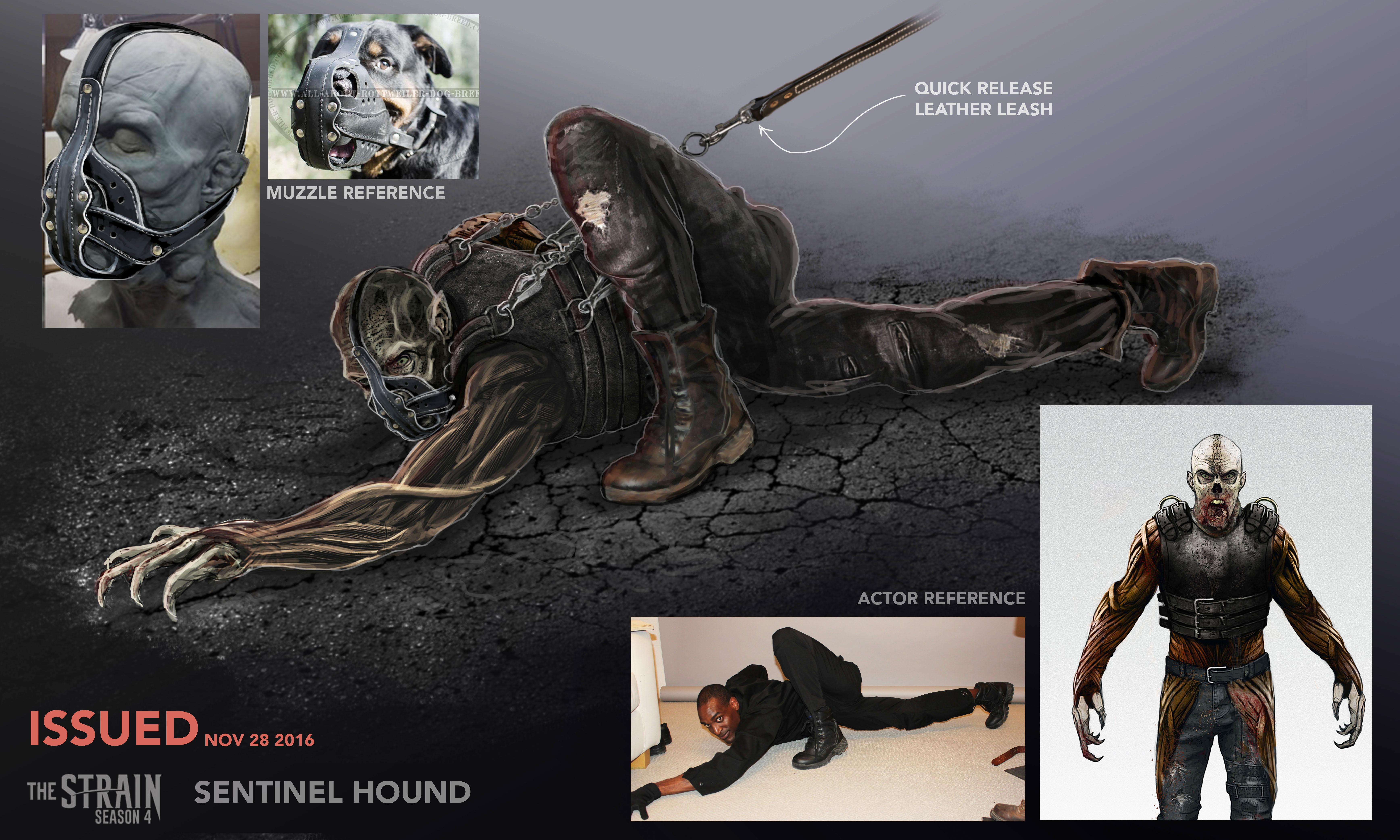 Sentinel Hound_Restraints&Muzzle