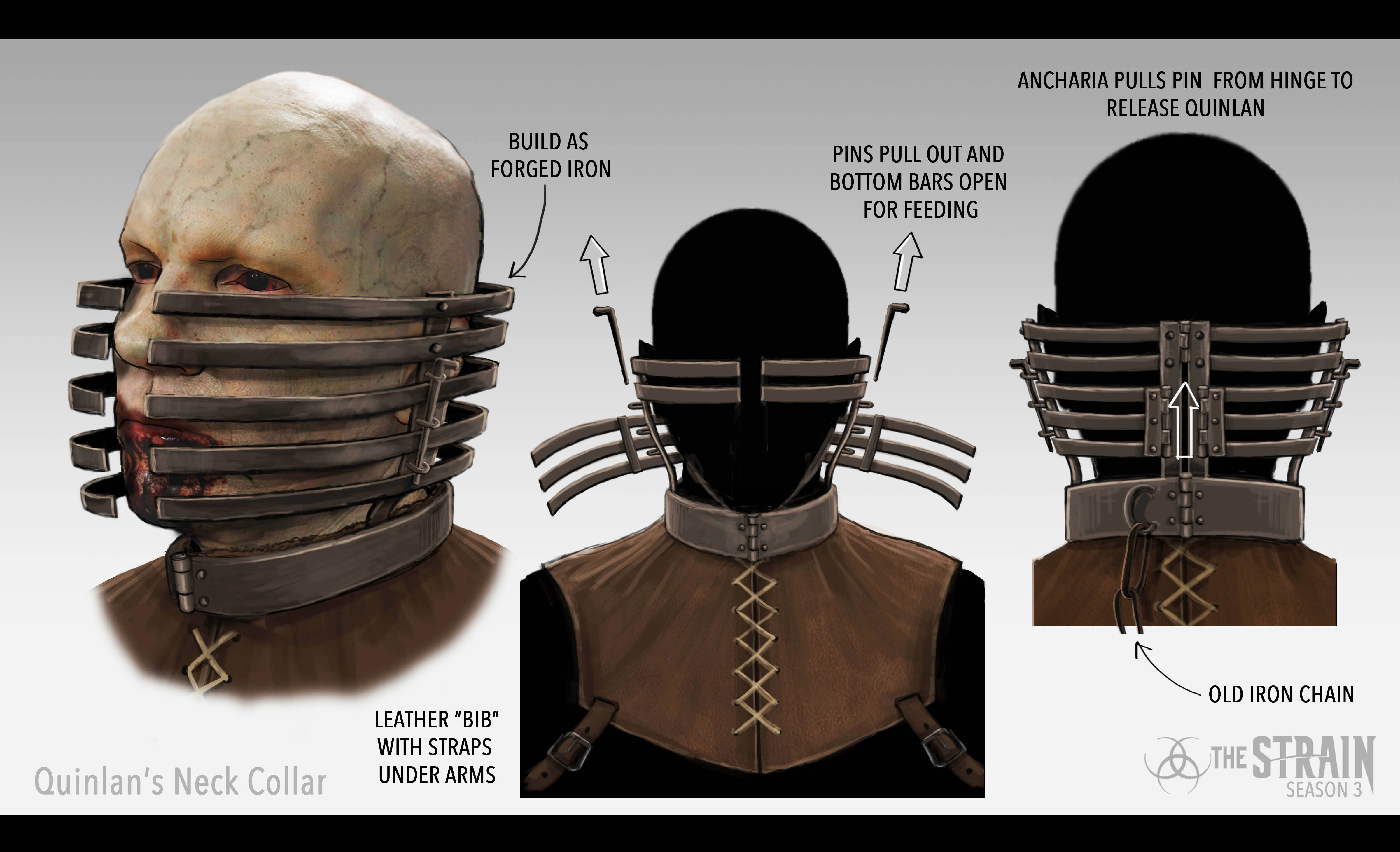 Quinlan's Neck Collar_Leather Bib