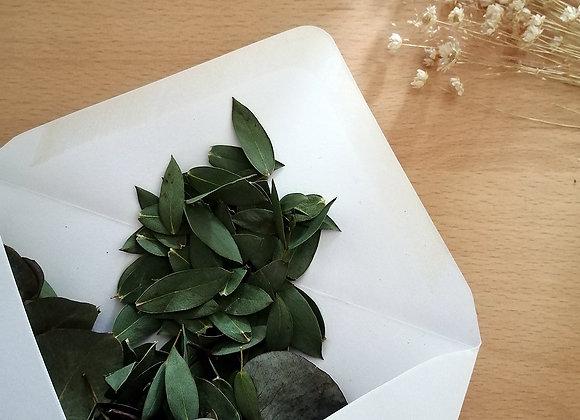 Dried eucalyptus confetti