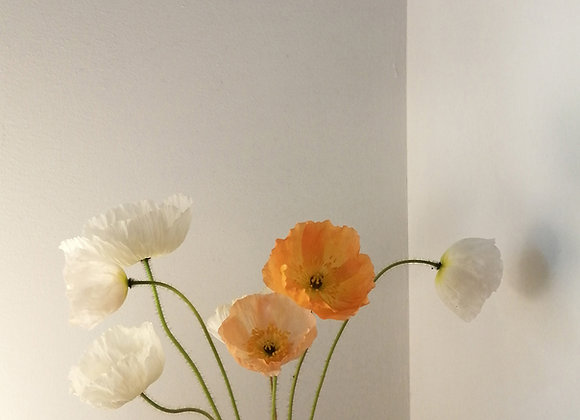 Poppy art poster print, no.4