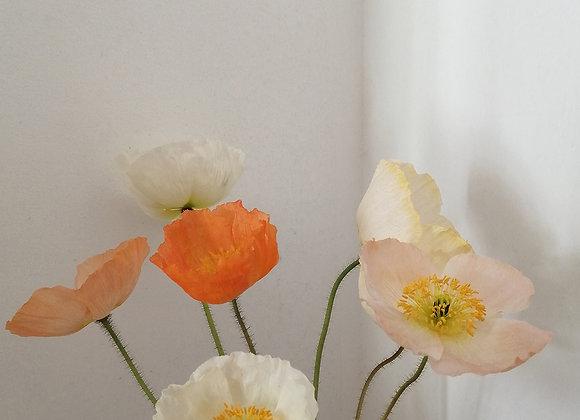 Poppy art poster print, no.2