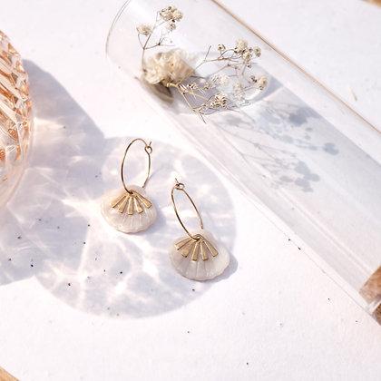 Seashell Pearl
