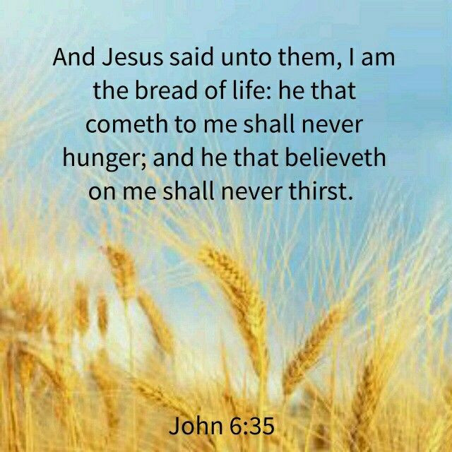 Daily Bible Verse about the Bread of Life - Bible Time - Bible Verses