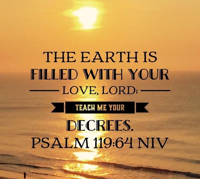 Daily Bible Verse About Seeking Truth - Bible Time - Bible Verses