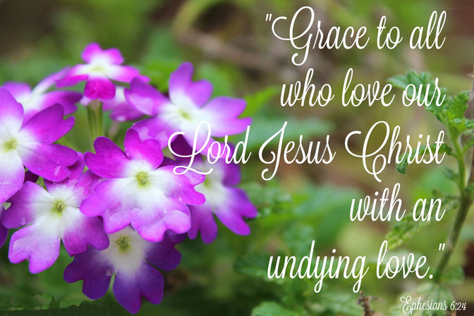 Daily Bible Verse On Grace In Our Lord - Bible Time - Bible Verses