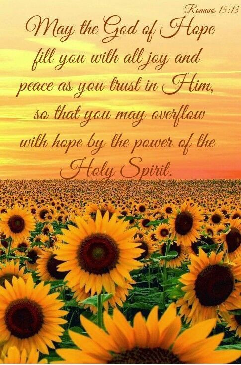 Daily Bible Verse About Hope - Bible Time - Bible Verses