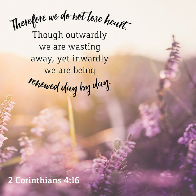 Daily Bible Verse About Being Renewed By The Spirit | Bible
