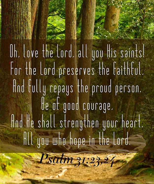 Daily Bible Verse On Hope - Bible Time - Bible Verses