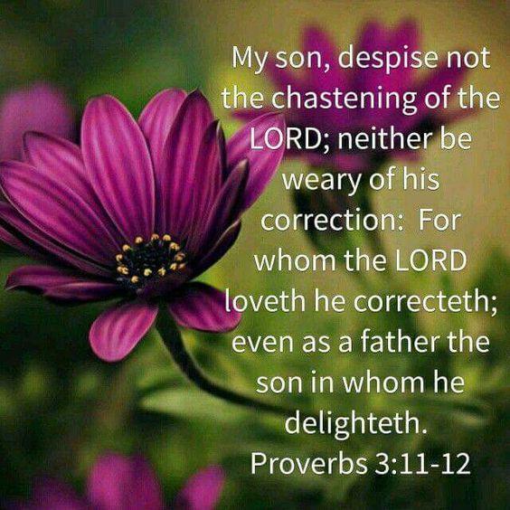 Daily Bible Verse On Discipline - Bible Time - Bible Verses