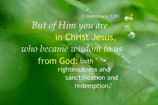 Daily Bible Verse About Jesus - Bible Time - Bible Verses