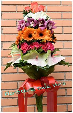 PicsArt_09-22-08.51.08.jpg