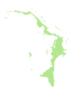 abaco copy.png