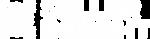 BG_Logo_SellerInsight_White.png