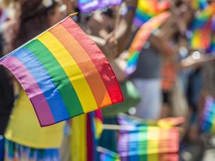 El PJ de SI y el Frente Todos de Vicente  López sumaron más voces en el  Día del Orgullo LGBT