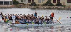 Marist Dragons Adelaide 2016