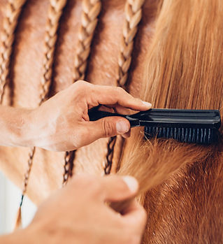 Brush Horse.jpg