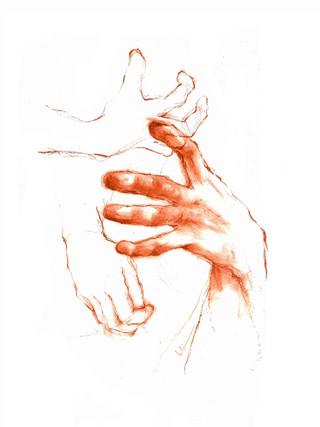 Estudio de manos