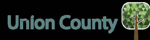 CouncilforUnionCountyFamilies.png