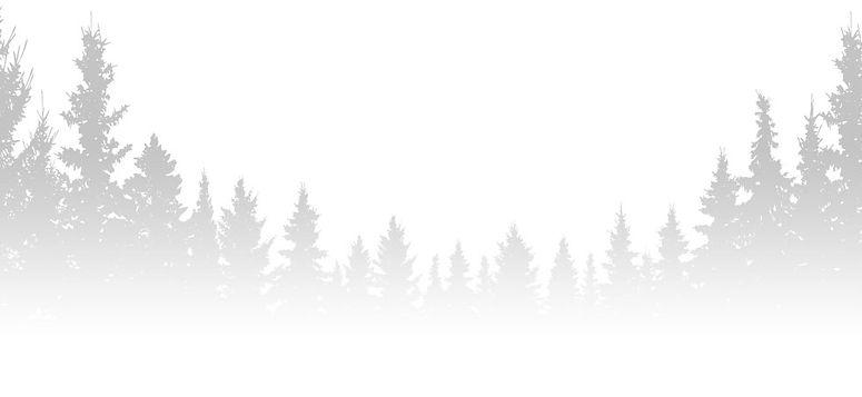 OutDoorFreedomFest-_Bottom.jpg