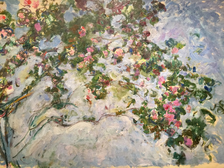Magical Moments of Monet