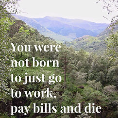 You were not born to just go to work, pay bills and die