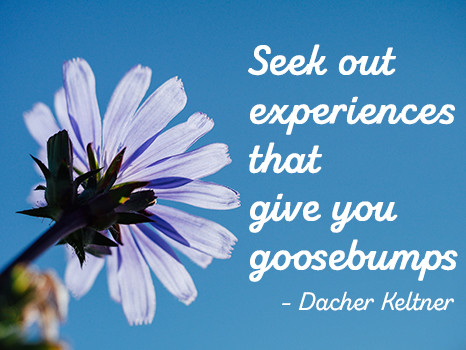 Seek out experiences that give you goosebumps
