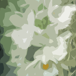 BB_0190