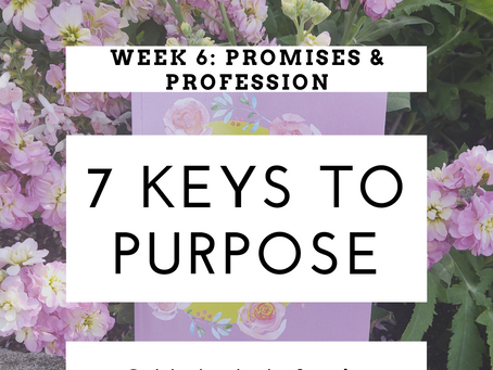 7 Keys To Purpose I Week 6: Promises and Profession