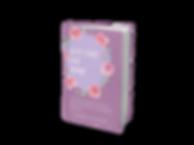 SFTMockupbook.png