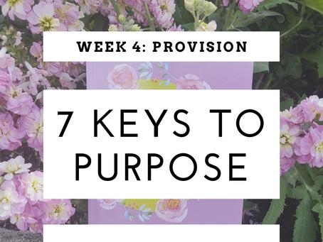7 Keys To Purpose I Week 4: Provision