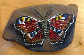 butterflyl.jpg