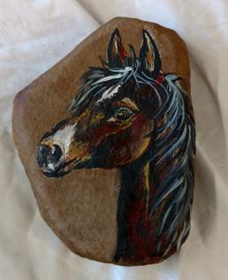 bay horse.jpg