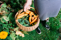 veg-basket-held