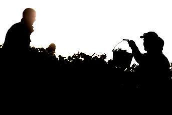 Vignerons.jpg