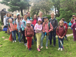 Экскурсия в мир растений