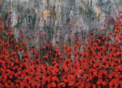 Un campo rojo