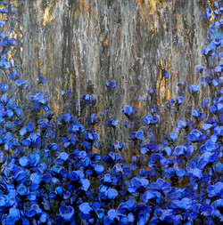 Dorado,-lluvia-sobre-azul