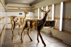 Robert Cram - Whitetail Deer