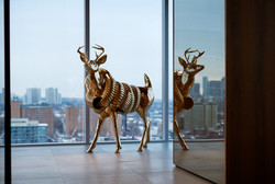 Robert Cram - Live/work Deer