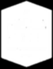 FSEA-Logo-White-Trans.png