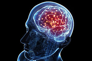 brain_activity-5798eebf5f9b589aa9ae69b2.