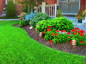 Lawn Maintenance, Fall Cleanup, Spring Cleanup