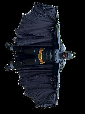 Batman Animation Dekoration Shows Kindergeburstag