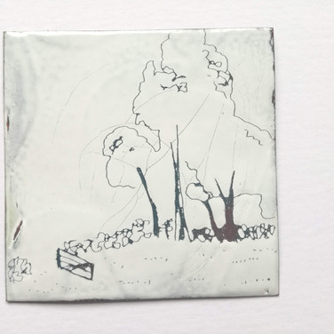 Amy Hutchings - Trees of Wedmore
