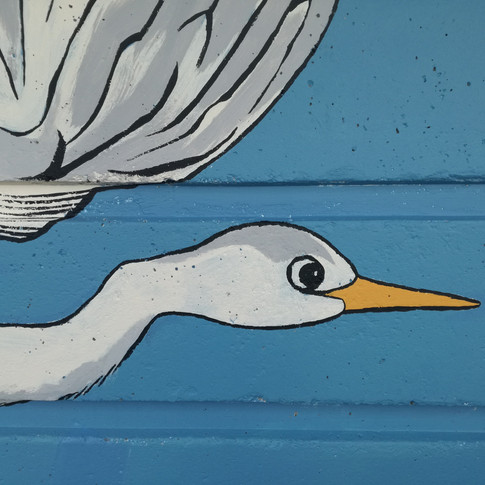 Amy Hutchings - Heron getting air