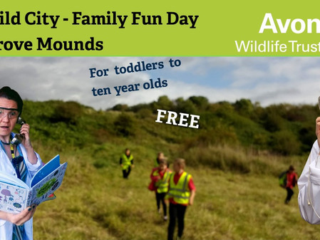 Avon Wildlife Trust's Family Fun Day