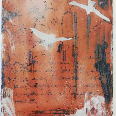 Amy Hutchings - Birds