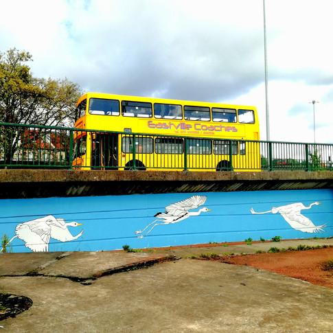 Amy Hutchings - Heron mural