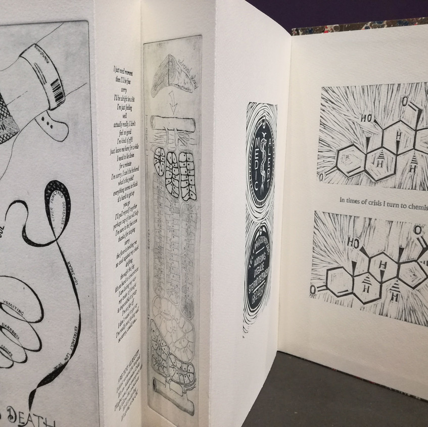 Amy Hutchings - Artists book